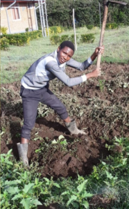 Nyangore Christopher killing the weeds!